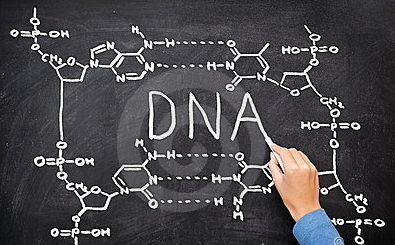 So you got a 23andMe test, now what? -